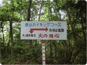 160528sawayama-haiking.jpg