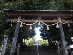 170528hatiman-umemori.jpg