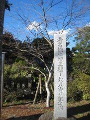 190313hironomiyasamaotaiyori.jpg