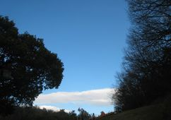 200311sanpokaerisora.jpg