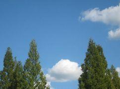 201001sanpokaerisora1.jpg