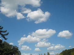 201001sanposora4.jpg